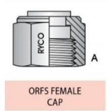"Cap ORFSF 1/2"""
