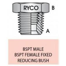 Bush S24-0402 1/8 X 1/4 BSP
